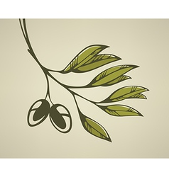 gleen olive background vector image vector image