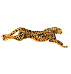 running cheetah art vector image vector image