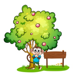 A cute monkey under the tree beside the empty vector image vector image