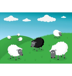 Black and white sheep vector