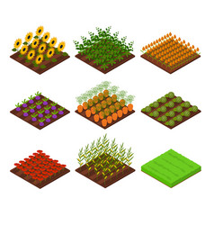 farm set isometric view vector image