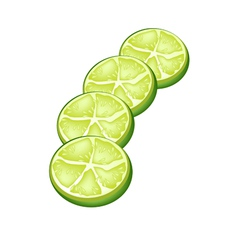 Fresh limes and half on white background vector