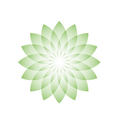 green lotus flower - symbol of yoga wellness vector image vector image