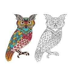 Printable coloring book page for adults - owl vector