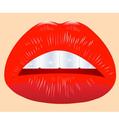 Beautiful feminine lips vector
