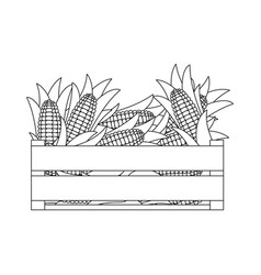 Black silhouette of wooden box with corncobs vector