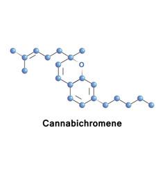 cannabichromene is a phytocannabinoid vector image vector image