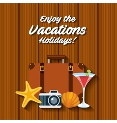enjoy vacations with travel icon vector image