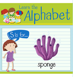 Flashcard letter S is for sponge vector image vector image