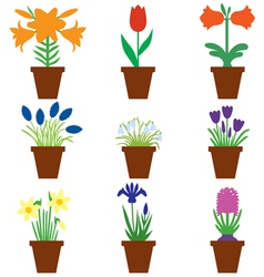 Flower pot color vector