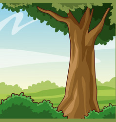 beautiful forest cartoon vector image