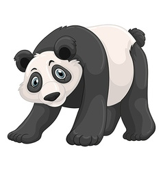 Panda with happy face vector image