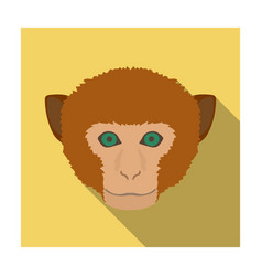 Monkey icon in flat style isolated on white vector