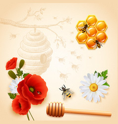 colored honey composition vector image vector image