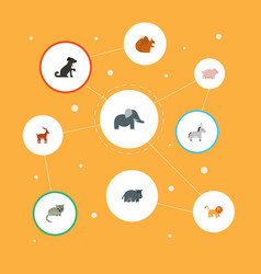 Flat icons hippopotamus jackass moose and other vector