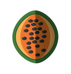Papaya healthy food shadow vector