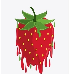 Strawberry fruit and splash design vector