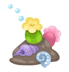 coral and shells vector image
