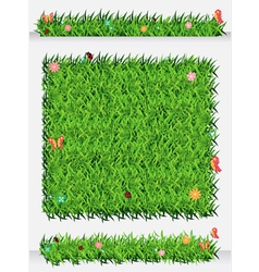 Green Grass Backgrounds vector image