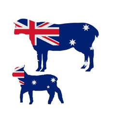 Australian sheeps vector