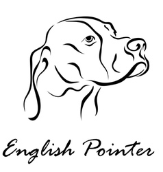 English pointer vector