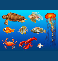 Different kinds of wild animals underwater vector