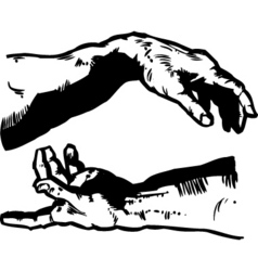 Creation hands vector