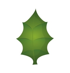Green leaf icon nature design graphic vector
