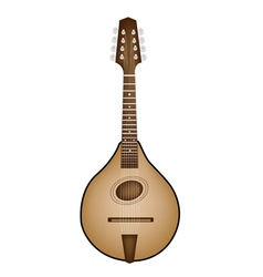 A Beautiful Antique Mandolin on White Background vector image vector image