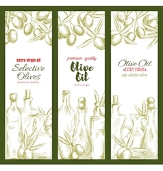 Olive oil sketch banner set for food theme design vector