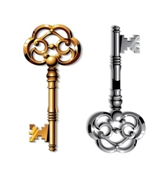 Gold and silver realistic vintage isolated keys vector image