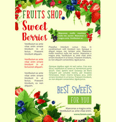 Berries poster for farm fruits shop vector
