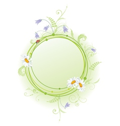daisy bluebell and ladybird vector image