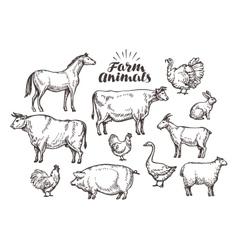 Farm sketch collection animals such as vector