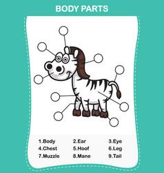 Zebra vocabulary part of body vector