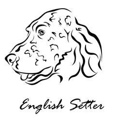 English setter vector