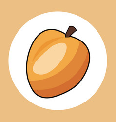 apricot healthy fresh image vector image