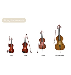 Four musical instrument strings vector