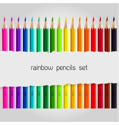 Big color pencil set vector