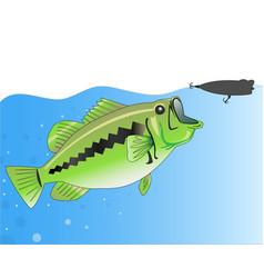 bass fishing vector image