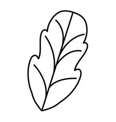 Black silhouette of leaf of beet vector