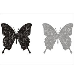 Butterflies in biology concept vector