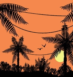 Sunset in the tropical jungle vector