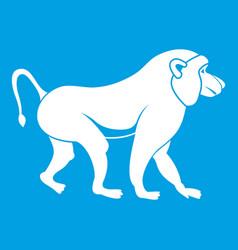 Japanese macaque icon white vector