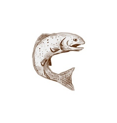 Rainbow Trout Jumping Watercolor vector image vector image