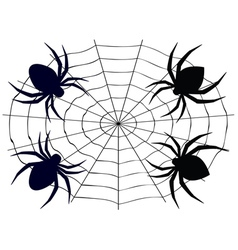 Cartoon spider4 vector
