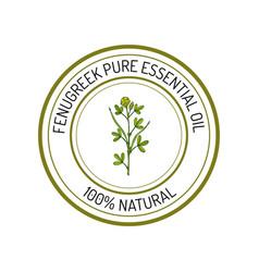 Fenugreek essential oil label aromatic plant vector