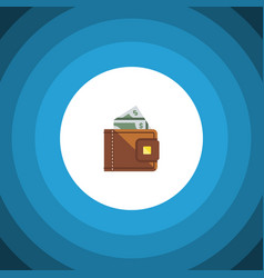 isolated cash flat icon finance element vector image