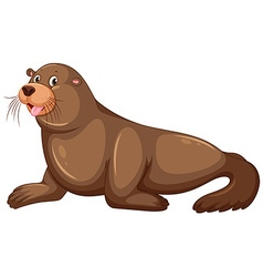 Sea lion with happy face vector