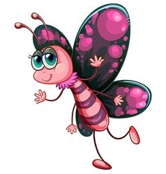 A pink butterfly vector